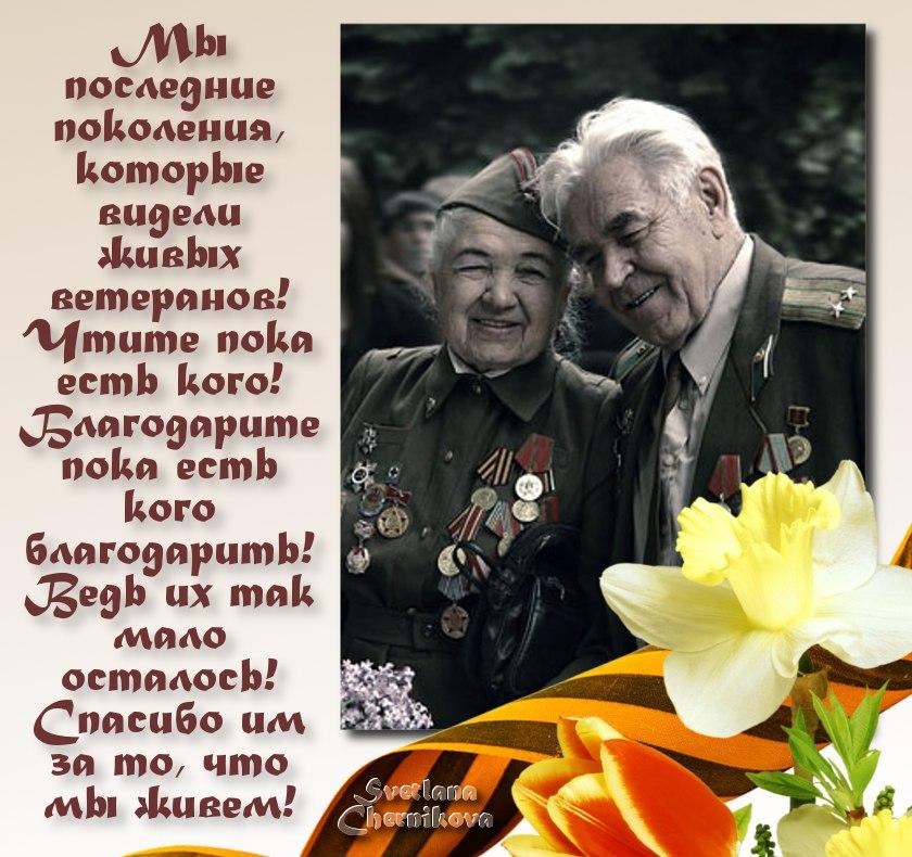 Поздравления ветеранам войны на 9 мае